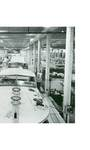 From Craft to Industry: The Boat Builders of Holland (Factory Photo Close-Up)