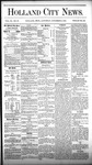 Holland City News, Volume 9, Number 39: November 6, 1880 by Holland City News